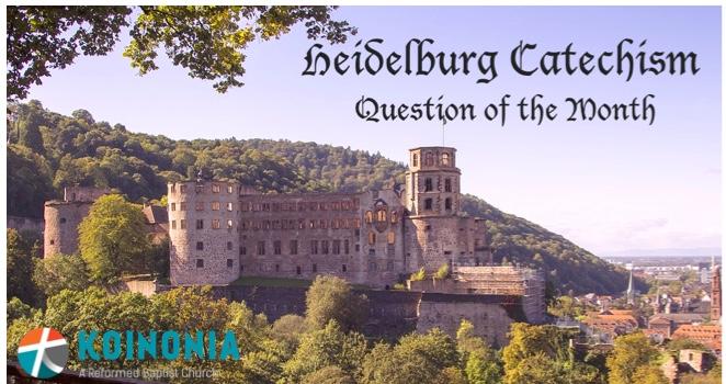 Heidelberg Catechism Q. 28 on God's Providence